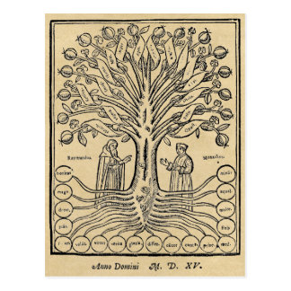 Medieval Tree of the Sciences Sepia Postcard