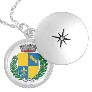 Medio Dinero Chapado Medallón Redondo Collar Plateado
