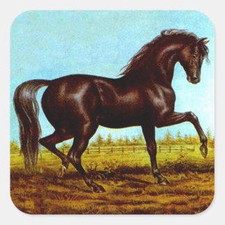 Medio galope de la suposición del caballo de la pegatina cuadrada