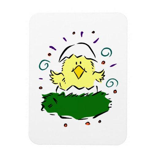 Medios remolinos de la hierba del huevo del pollue imanes rectangulares