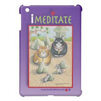 Meditating Cats Bud & Tony iPad Case