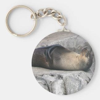 Meditating Sea Lion Keychain