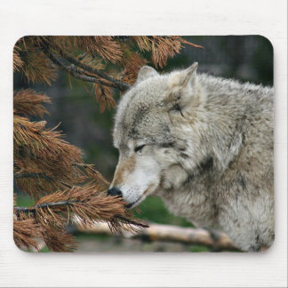 Meditating wolf mouse pad