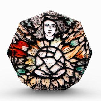 Meditation in colors. acrylic award