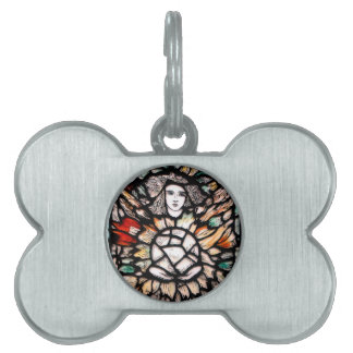 Meditation in colors. pet ID tags