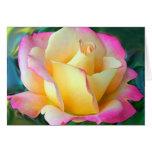 Meditation On A Rose Greeting Card