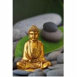 Meditation Standing Photo Sculpture