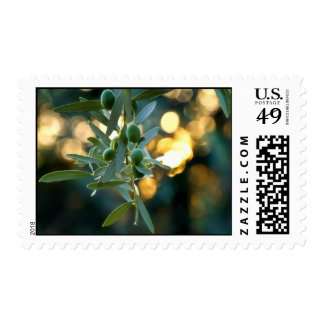 Mediterranean Gold; Olives On It's Tree Branch Postage Stamps