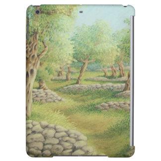 Mediterranean Olive Grove, Spain iPad Air Case