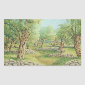 Mediterranean Olive Grove Spain Rectangle Stickers