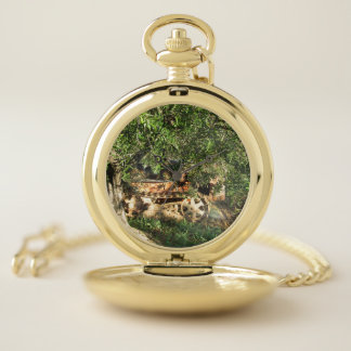 Mediterranean olive tree and crawler tractor pocket watch