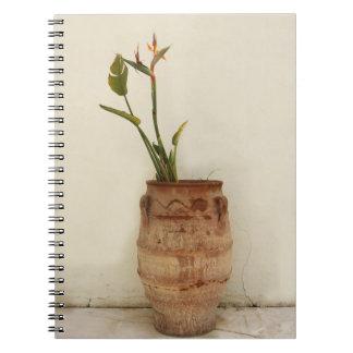 Mediterranean Plant Notebook