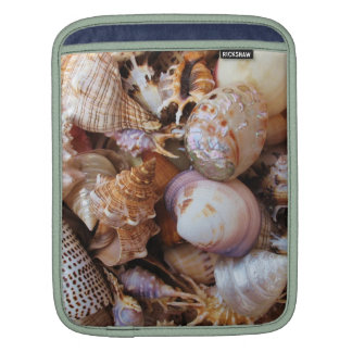 Mediterranean sea shells and starfish sleeves for iPads