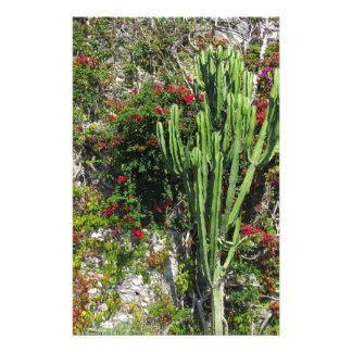 Mediterranean wall decoration with cactus stationery