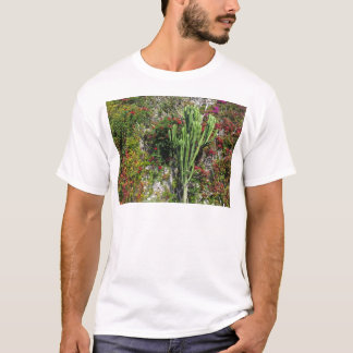 Mediterranean wall decoration with cactus T-Shirt