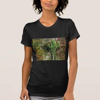 Mediterranean wall decoration with cactus tee shirt