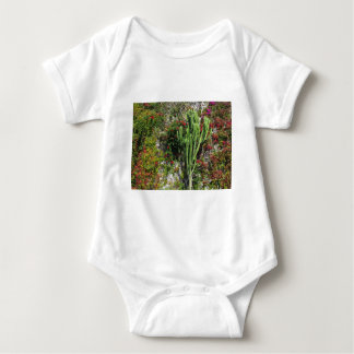 Mediterranean wall decoration with cactus tees