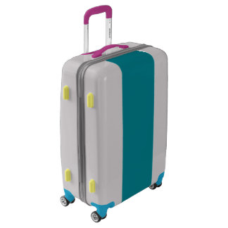 Medium color bash suitcase