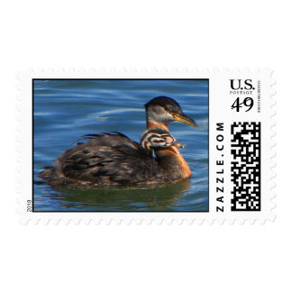 Medium Postage Stamp