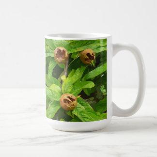MEDLAR FRUIT COFFEE MUG