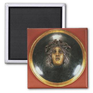 Medusa shield magnet