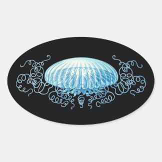 Medusas adaptables de Haeckel Pegatina Ovalada