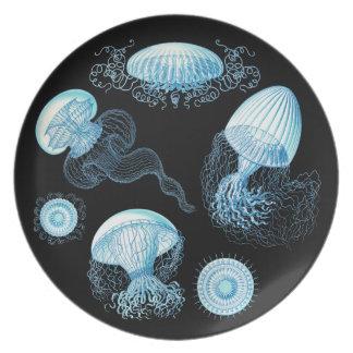 Medusas adaptables de Haeckel Plato Para Fiesta