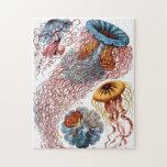 Medusas adornadas del vintage puzzles con fotos