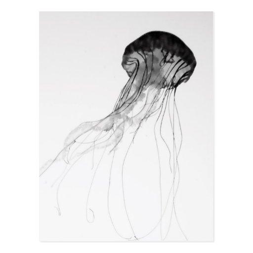 Medusas agraciadas tarjetas postales