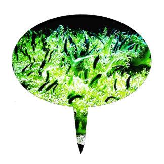 Medusas al revés/Cassiopea Figuras Para Tartas