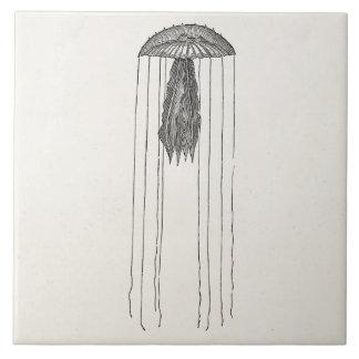 Medusas armadas largas de la antigüedad de las azulejo cuadrado grande