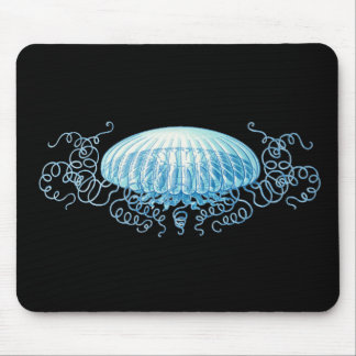 Medusas de Haeckel Mousepad