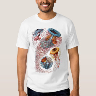 Medusas de Haeckel Playeras