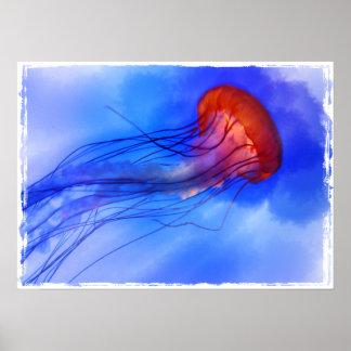 Medusas de la acuarela poster
