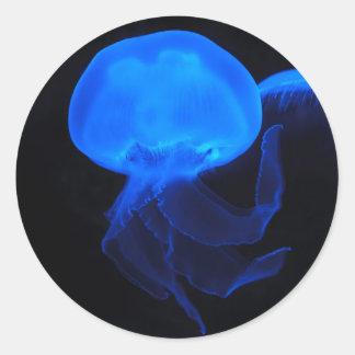 Medusas de la luna pegatina redonda