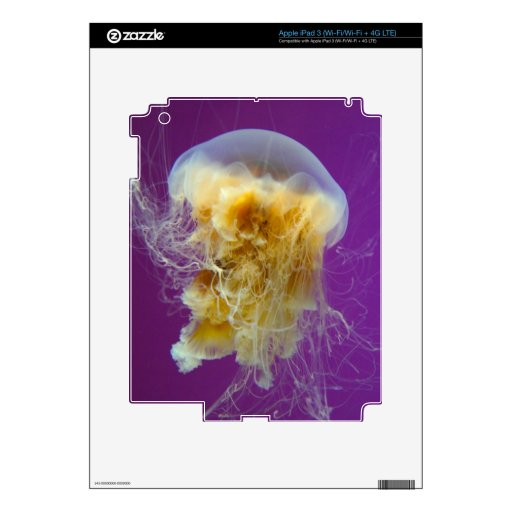 Medusas de la melena del león pegatinas skins para iPad 3