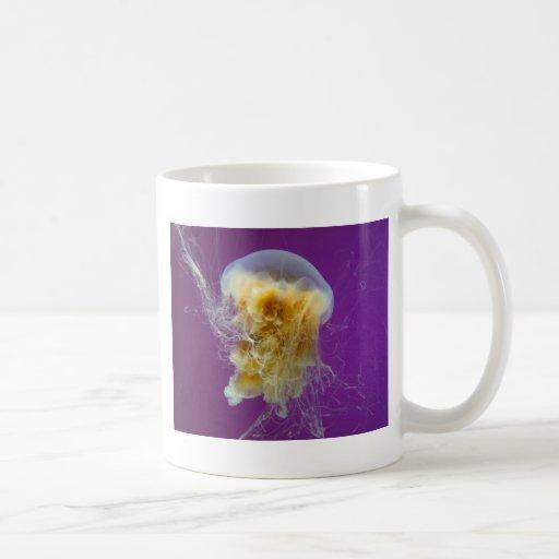 Medusas de la melena del león taza de café