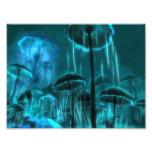 Medusas de la seta fotos