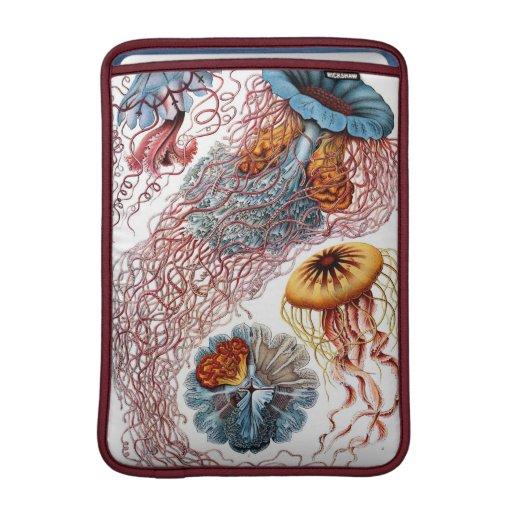 Medusas del vintage de Haeckel Fundas Para Macbook Air