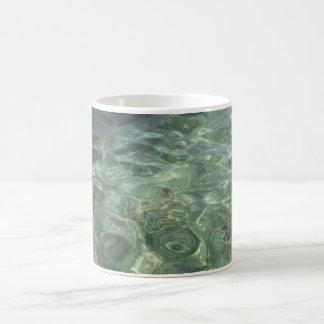 Medusas en la taza del mar