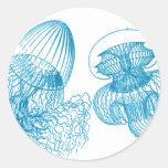 Medusas Etiqueta