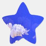 Medusas Pegatina En Forma De Estrella