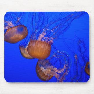 Medusas subacuáticas en el mar del agua azul alfombrillas de ratones