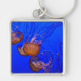 Medusas subacuáticas en el mar del agua azul llavero cuadrado plateado