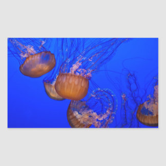 Medusas subacuáticas en el mar del agua azul pegatina rectangular