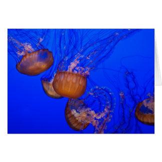 Medusas subacuáticas en el mar del agua azul tarjeta de felicitación