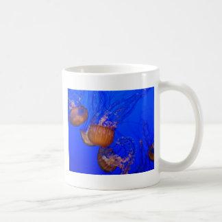 Medusas subacuáticas en el mar del agua azul taza