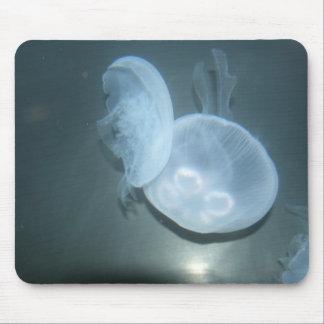 Medusas Tapetes De Raton