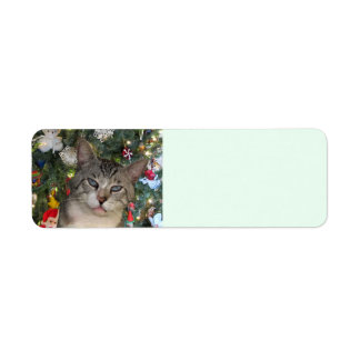 Meece Cat Merry Christmas Return Address Labels