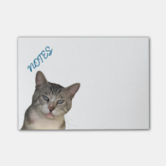 Meece Kitty With Blue Eyes Post-it Notes